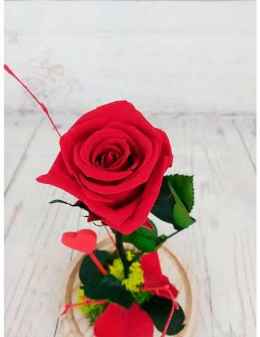 Rosa Roja Eterna La Bella y...