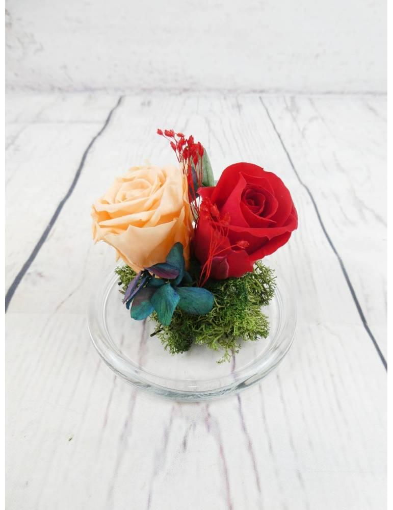 rosas preservadas roja y naranja