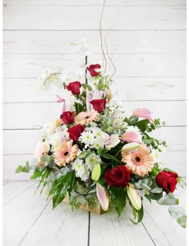 Regala un mini jardin floral, flores frescas y plantas de interior.