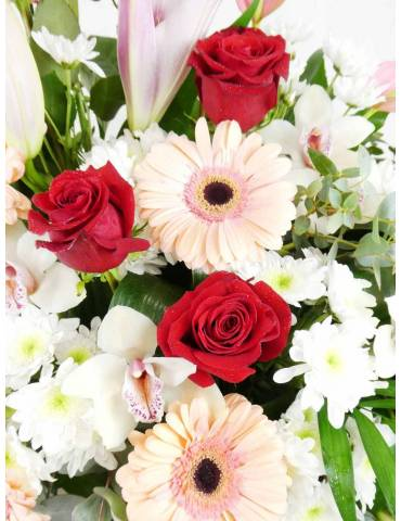 rosas rojas, gerberas y margaritas