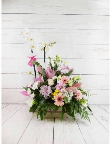 Plantas y flores combinadas en todo de color blanco