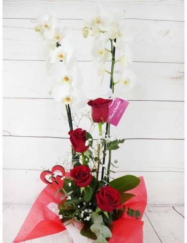 Orquídea Blanca & Rosas...