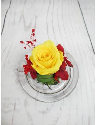 flores bandera españa
